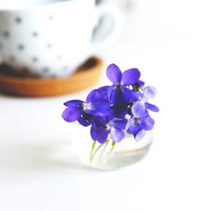 Violette-bulle-soliflore-Nelly-Genisson